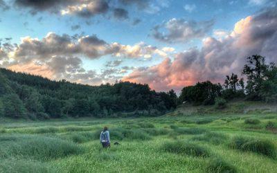 Von einer Nahtoderfahrung und dem Weg aus der Krise